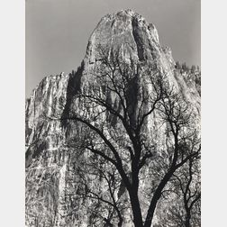Ansel Adams (American, 1902-1984)      Sentinel Rock, Oak Tree