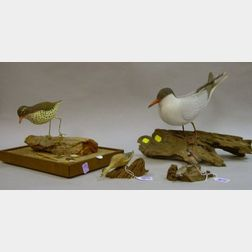Russ P. Burr Miniature Carved and Painted Duck Figure and Quail Figural Group, and Bill Weikert Carved and Painted Shorebird and Seagul