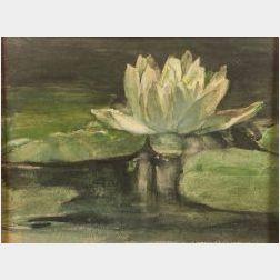 John LaFarge (American, 1835-1910)  Water Lily