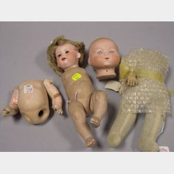 Two Bisque Head Baby Dolls