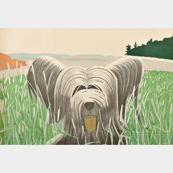 Alex Katz (American, b. 1927)      Dog at Duck Trap