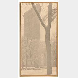 "Alfred Stieglitz (American, 1864-1946)      The ""Flat-iron"""
