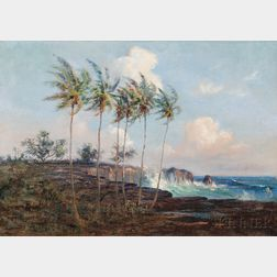 David Howard Hitchcock (American, 1861-1943)      Big Island of Hawaii
