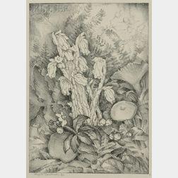 Eliza Draper Gardiner (American, 1871-1955)      The Forest Nunns