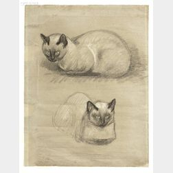 Theophile Alexandre Steinlen (French, 1859-1923)      Study of a Cat