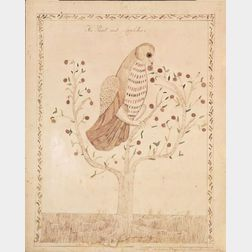 Attributed to Sally Hodgdon (Rochester, New Hampshire, 1780-1855)    The Parrot and Apple Tree.