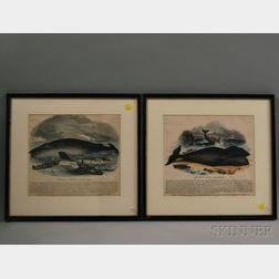 Two Framed Whaling-themed Woodcuts