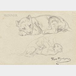 Rosa Bonheur (French, 1822-1899)      Studies of the Artist's Lion Cub, Fathma