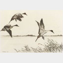 Hans Kleiber (American, 1887-1967)  Lot of Two Sporting Prints:  Three Pintails