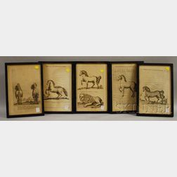 Set of Five Framed Giuseppe D'Alessandro Printed Book/Folio Plates Depicting   Studies of Horses and a Lion