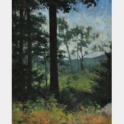 Frank Weston Benson (American, 1862-1951)      Woods, Dublin, New Hampshire