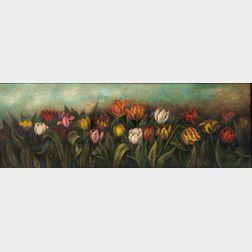 American School, 19th Century      A Tulip Garden