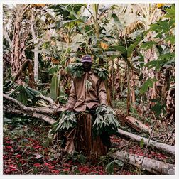 Pieter Hugo (South African, b. 1976)      John Kwesi, Wild Honey Collector, Techiman District, Ghana