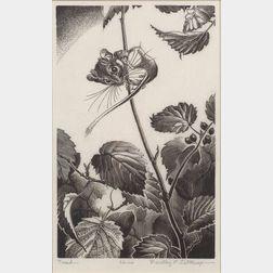Lot of Two Wood Engravings:    Dorothy Pulis Lathrop (American, b. 1891), Treed