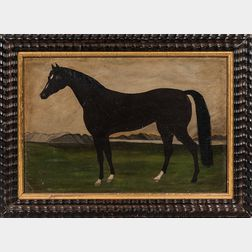 American School, Late 19th Century      Portrait of a Horse