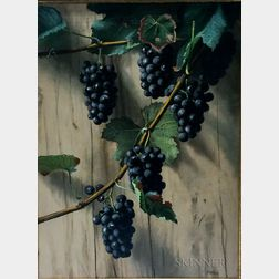 Attributed to Franklin Harrison Miller (American, 1843-1911)      Still Life with Grapes on the Vine