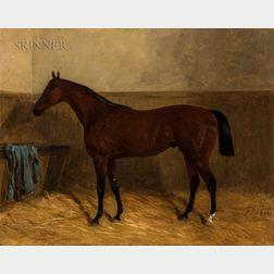 John Duvall (British, 1816-1892)      Bay Hunter in a Stable Setting