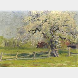 Edith Briscoe Stevens (American, 1896-1931)    Old Apple Tree