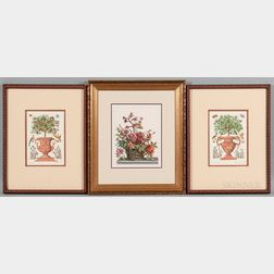 Three Decorative Floral Prints in the 17th Century Style:    After Martin Engelbrecht (German, 1684-1756), Two Reproduction Plates