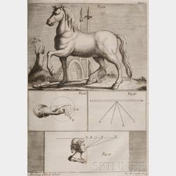 (Leonardo da Vinci (1452-1519))