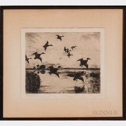 Frank Weston Benson (American, 1862-1951)      Ducks in Flight