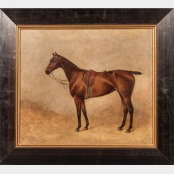 American School, Early 20th Century      Portrait of a Brown Horse