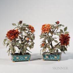 Pair of Hardstone Dahlias in Cloisonne Pots