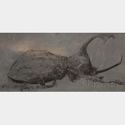 Leonard Baskin (American, 1922-2000)      Horned Beetle.