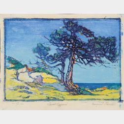 Margaret Jordan Patterson (American, 1867-1950)      Coast Cypress