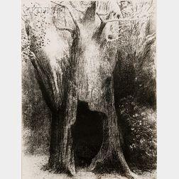 Odilon Redon (French, 1840-1916)      Je me suis enfoncé dans la solitude, j'habitais l'arbre derriere moi