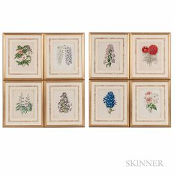 Eight Framed Lithographs of Flowers