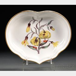 Derby Porcelain Botanical Dish