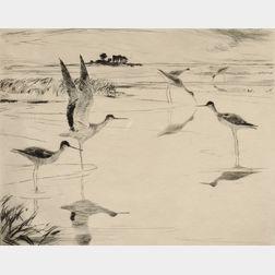 Frank Weston Benson (American, 1862-1951)      Yellowlegs No. 2