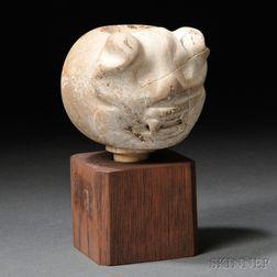 Nicoya Mace Head