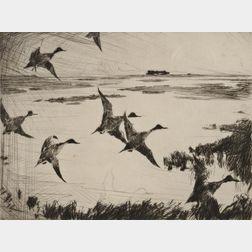 Frank Weston Benson (American, 1862-1951)      Over Sunk Marsh