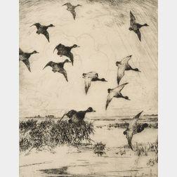 Frank Weston Benson (American, 1862-1951)      Flying Ducks