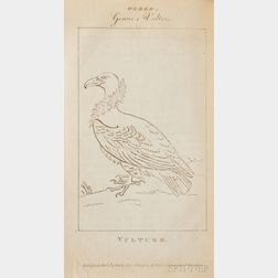Galton, Samuel John (1753-1832)   The Natural History of Birds Intended for the Amusement and Instruction of Children.
