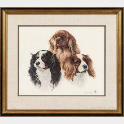 Charles Frace (Tennessee, 1926-2005)    Three Cavalier King Charles Spaniels