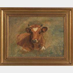 Charles Franklin Pierce (Sharon, New Hampshire 1884-1920)    Portrait of a Recumbent Cow.