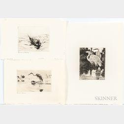 Frank Weston Benson (American, 1862-1951)      Six Small Bird Etchings: