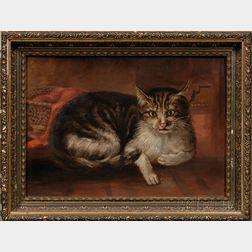 American School, late 19th Century,      Portrait of Reclining Tabby Cat.
