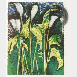 Jim Dine (American, b. 1935)  Calla Lilies Verona III