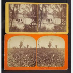 Stereoscopic Views of Florida