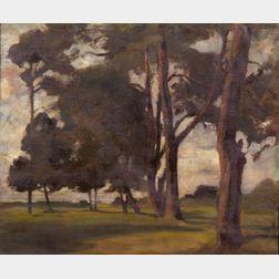Attributed to Alfred von Schrötter (Austrian, 1856-1935)    A Quiet Stand of Trees