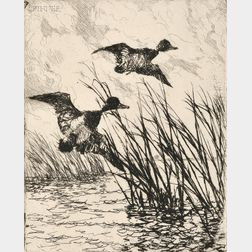 Frank Weston Benson (American, 1862-1951)      Pair of Ducks