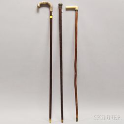 Two Canes and a Walking Stick