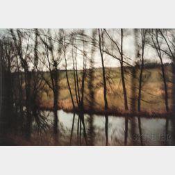 Nan Goldin (American, b. 1953)      Trees by the River, Munich