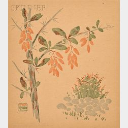 Arthur Wesley Dow (American, 1857-1922)      Barberries Sketch from Nature