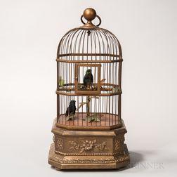 Birdcage Automaton
