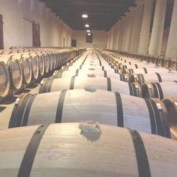 Philip Togni Cabernet Sauvignon 2004, 6 bottles